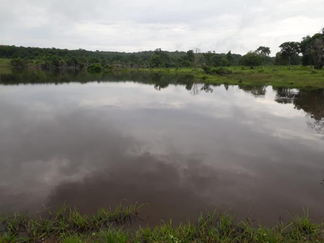 Fazenda com 160 aqls em Formoso do Araguaia - TO c/ confinamento e ótima infra!! - Foto 4