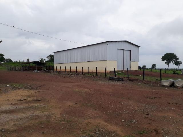 Fazenda com 160 aqls em Formoso do Araguaia - TO c/ confinamento e ótima infra!! - Foto 10