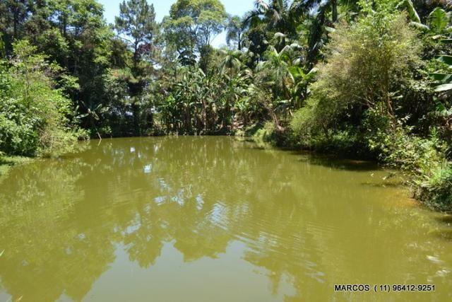 Chácara com 10.000 m² em Mogi das Cruzes - Foto 20