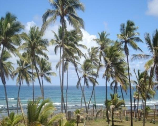 Casa para alugar com 4 dormitórios em Vilas do atlântico, Lauro de freitas cod:JS180 - Foto 19