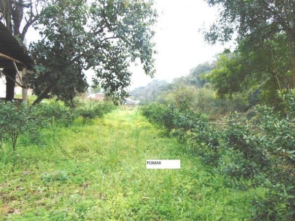 Chácara em Santos Reis em Montenegro - 10 - Foto 18