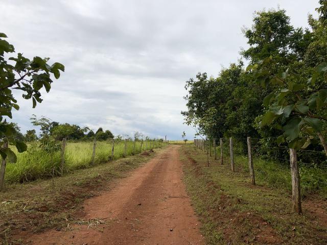 Ótima chácara em Bela Vista de Goiás - Foto 12