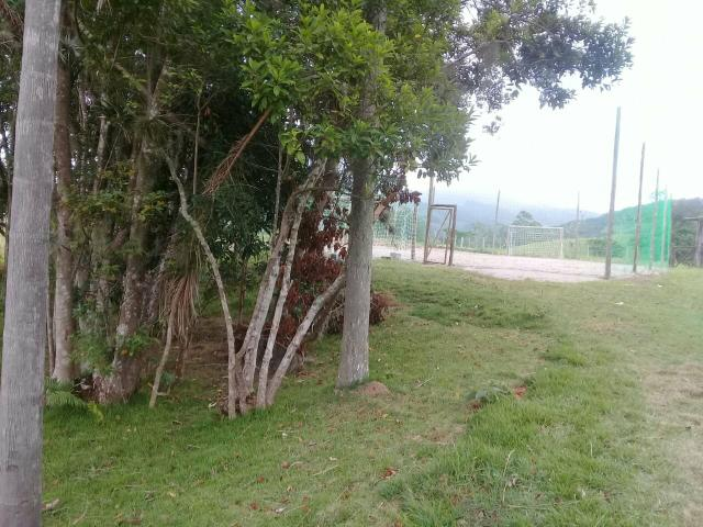 Lindo sitio Imaruí figueira grande - Foto 2
