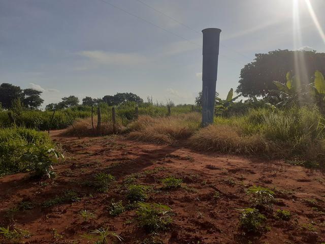 Chácara 6 hectares - Foto 2