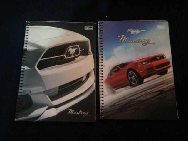 Cadernos de personagens - Foto 4