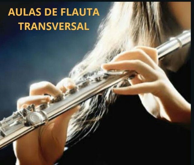 AULA DE FLAUTA TRANSVERSAL ( A DOMICÍLIO)