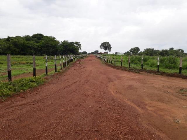 Fazenda com 160 aqls em Formoso do Araguaia - TO c/ confinamento e ótima infra!! - Foto 12