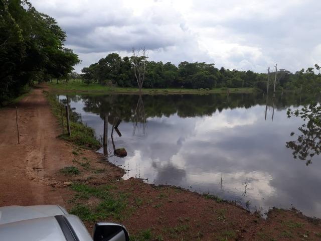 Fazenda com 160 aqls em Formoso do Araguaia - TO c/ confinamento e ótima infra!! - Foto 2