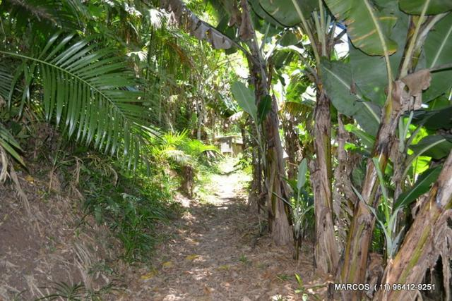 Chácara com 10.000 m² em Mogi das Cruzes - Foto 17