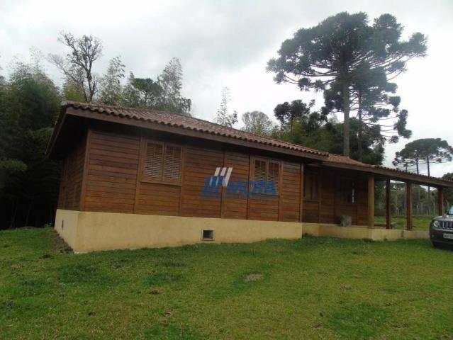 Chácara condomínio fechado são josé dos pinhais - Foto 10