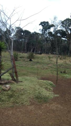 Fazenda plana - Foto 4
