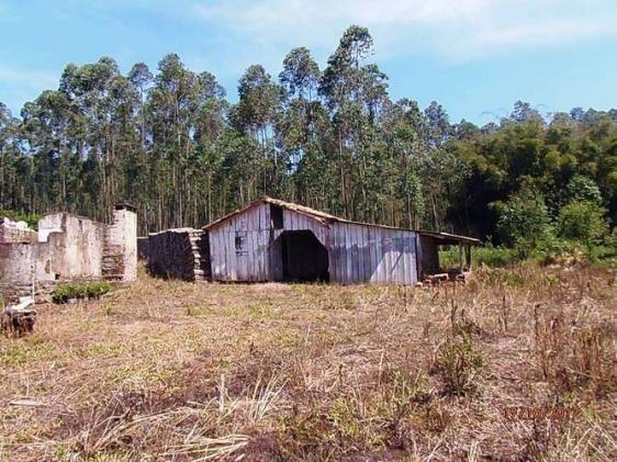 Chácara c/5,1 ha, Bom Jardim - Montenegro - 36 - Foto 5