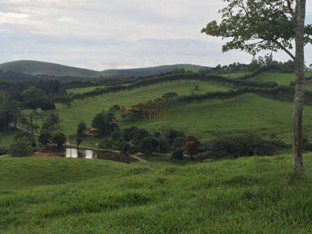 Bela Fazenda para boi - Cód 1877 - Foto 3