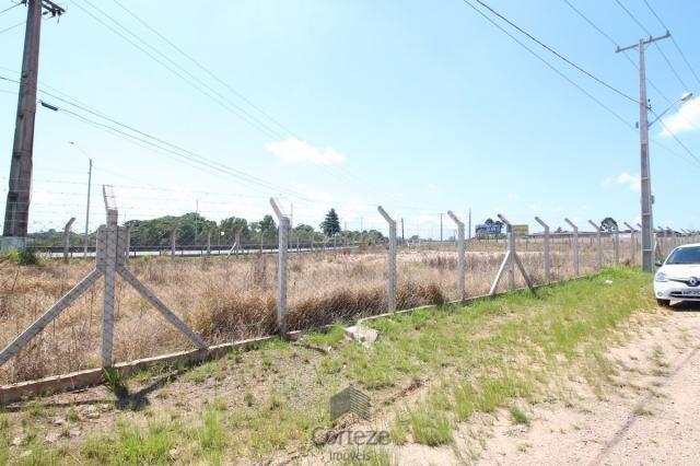 Terreno na Região do São Marcos BR-376 - Foto 5