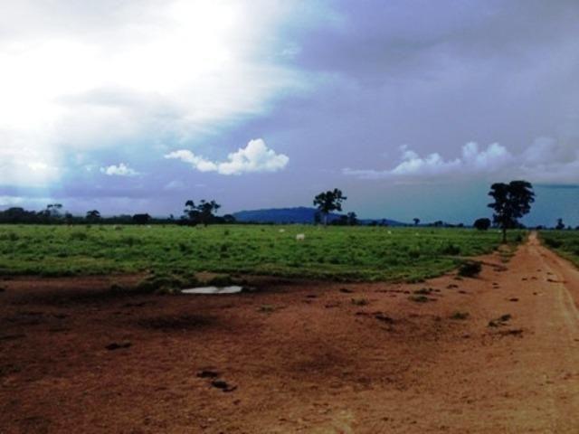 860 Alq. Pega 50% Imóveis Oferta Prazo C/ Entrada Guarani GO - Foto 13