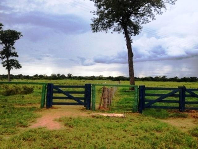 860 Alq. Pega 50% Imóveis Oferta Prazo C/ Entrada Guarani GO - Foto 20