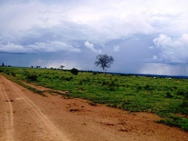 860 Alq. Pega 50% Imóveis Oferta Prazo C/ Entrada Guarani GO - Foto 15