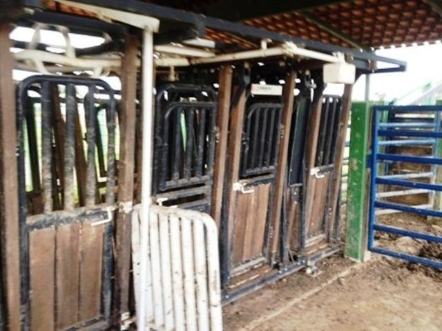 860 Alq. Pega 50% Imóveis Oferta Prazo C/ Entrada Guarani GO - Foto 17