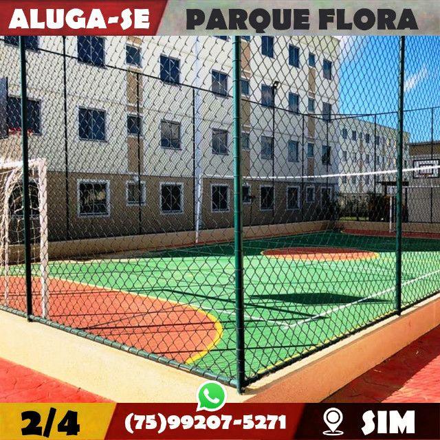 Parque Flora 2/4-Com Armários Na-Cozinha e Banheiro-Bairro-Sim-Feira de Santana-BA - Foto 13