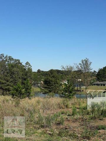 Terreno no Bosque Merhy, Quatro Barras. - Foto 13
