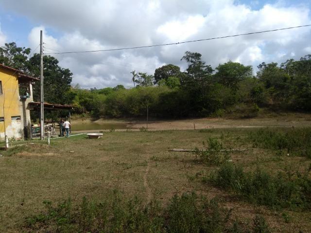 Vendo fazenda com 125 tarefas em Pojuca - Ba - Foto 14