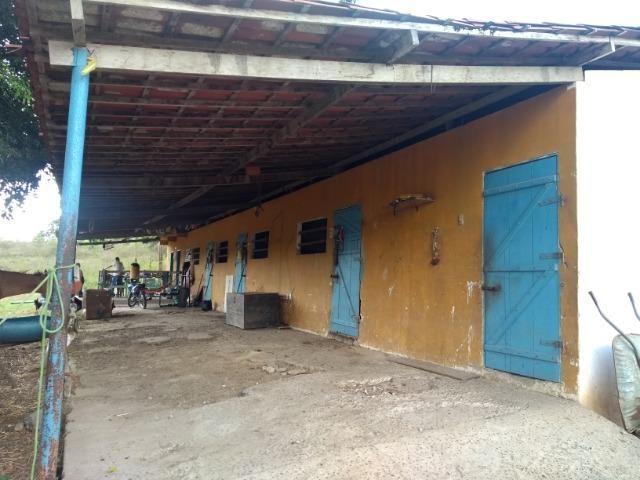 Vendo fazenda com 125 tarefas em Pojuca - Ba - Foto 6