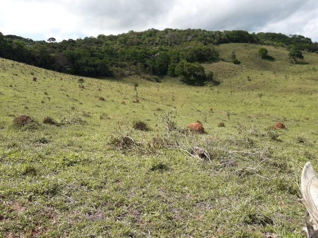 Fazenda no Vale - Cód 1585 - Foto 14