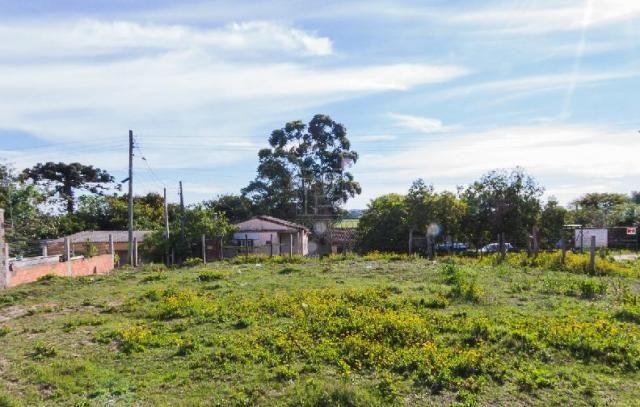 Terreno para alugar em Fragata, Pelotas cod:10284 - Foto 5