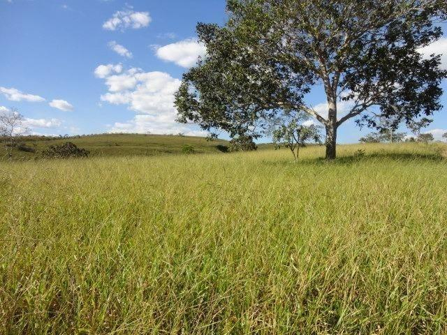 Fazenda Escriturada 90 Hect as Margens do Rio Areia Localizado Santo Antônio do Descoberto - Foto 3
