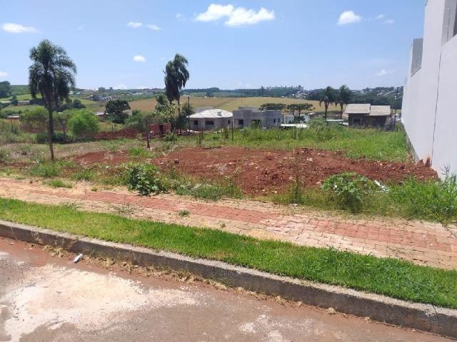 Terreno no bairro Bom Retiro em Chapecó/SC - Foto 3
