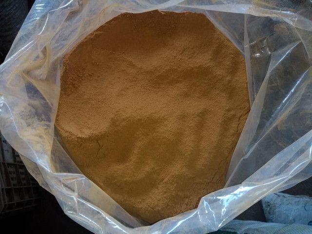 Canela em pó - Cinnamomum - Foto 3