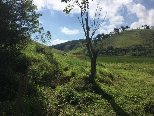 Fazenda boa e barata para boi - Cód 1713 - Foto 9