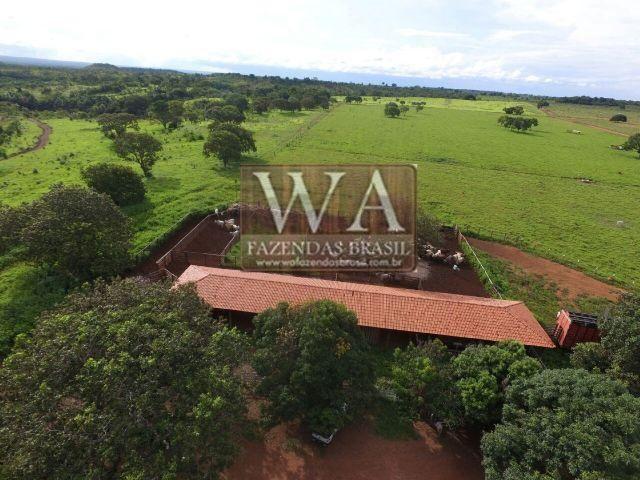 Fazenda de alto padrão no Tocantins