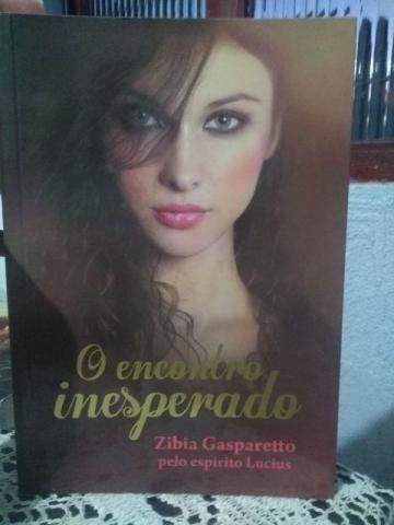 Livro - O Encontro Inesperado - Zibia Gasparetto