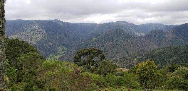 Sitio chácara em Urubici com vista para as montanhas - Foto 5