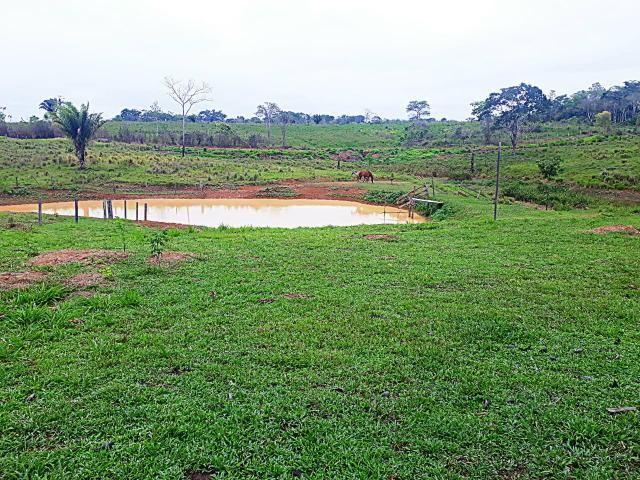 Vende-se terra ramal do mutum - Foto 3