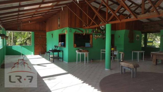 Chácara residencial à venda, Faxina, São José dos Pinhais. - Foto 17