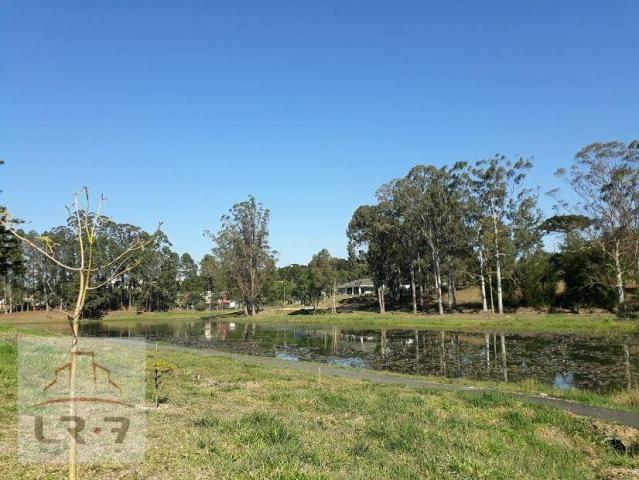 Terreno no Bosque Merhy, Quatro Barras. - Foto 9
