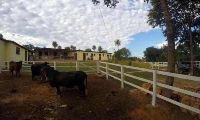 Vendo Esta Fazenda - Foto 6