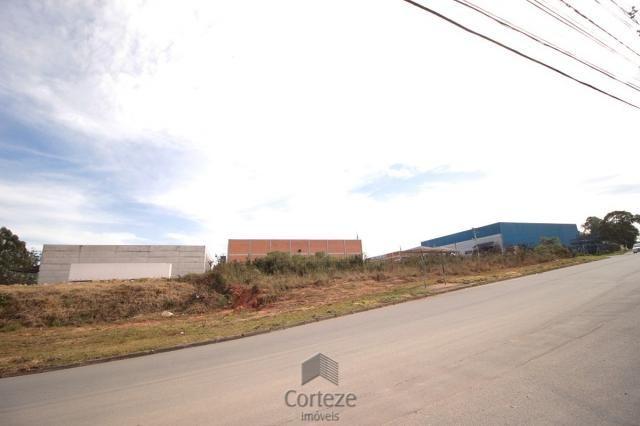 Terreno para locação no Barro Preto - Foto 4