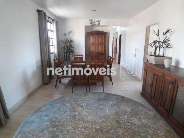 Apartamento à venda com 3 dormitórios em Salgado filho, Belo horizonte cod:818405 - Foto 3