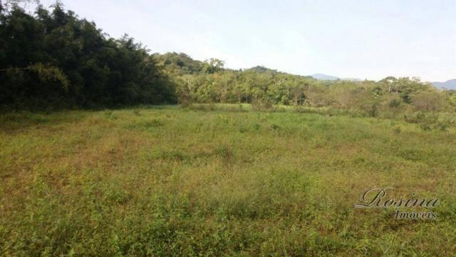 Terreno à venda, medindo 5000 m² por R$ 60.000 - Ponte Alta - Morretes/PR - Foto 5