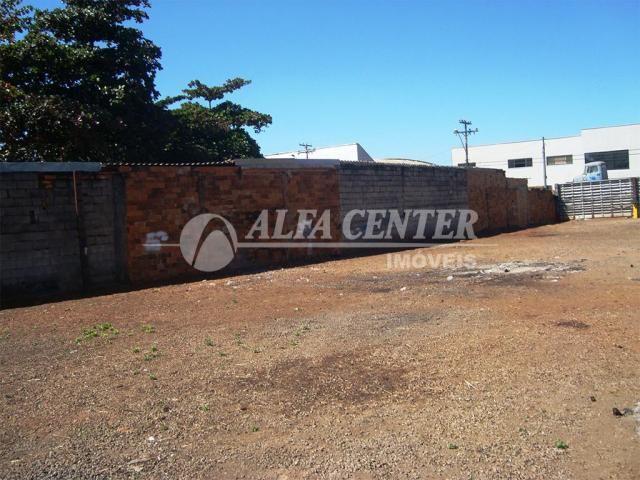 Terreno para alugar, 981 m² por R$ 2.500,00/mês - Capuava - Goiânia/GO