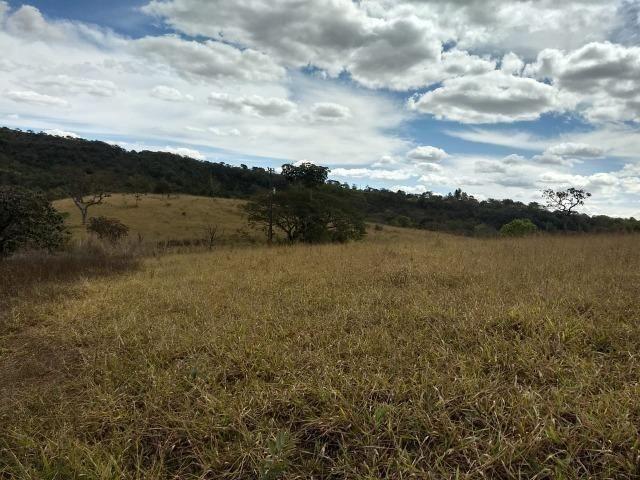 Fazenda Escriturada 90 Hect as Margens do Rio Areia Localizado Santo Antônio do Descoberto - Foto 4