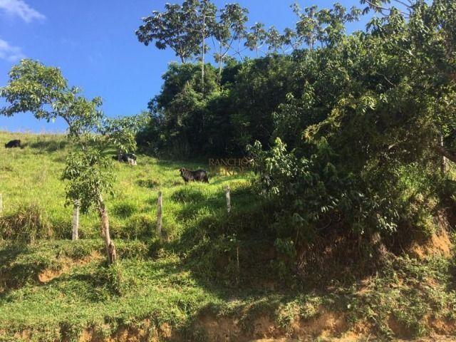 Fazenda boa e barata para boi - Cód 1713 - Foto 11