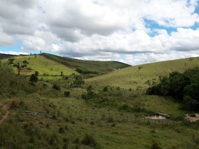 Fazenda no Vale - Cód 1585 - Foto 7