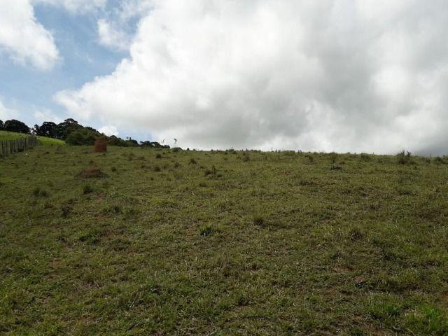 Fazenda no Vale - Cód 1585 - Foto 18