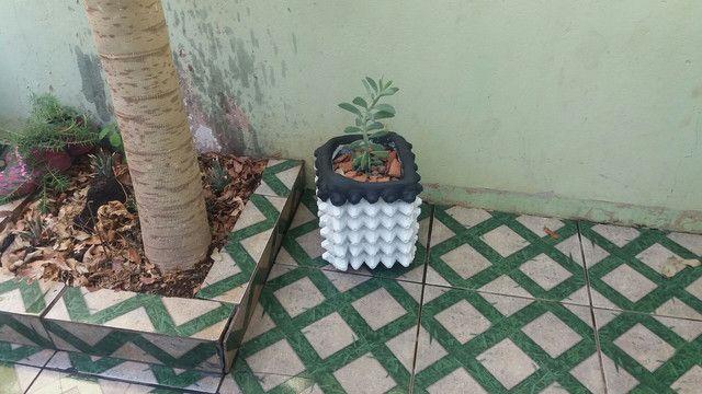Fruteiras e vasos de plantas artesanal - Foto 3