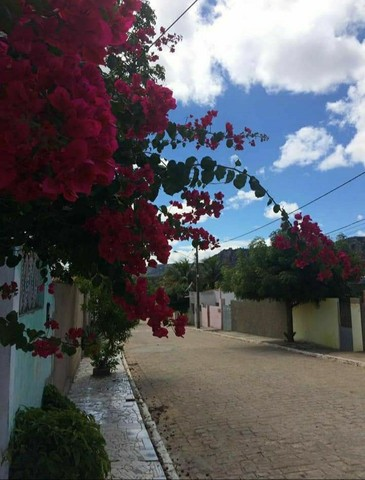 Casa a Venda ( No Parque Nacional Vale do Catimbau PE) - Foto 9