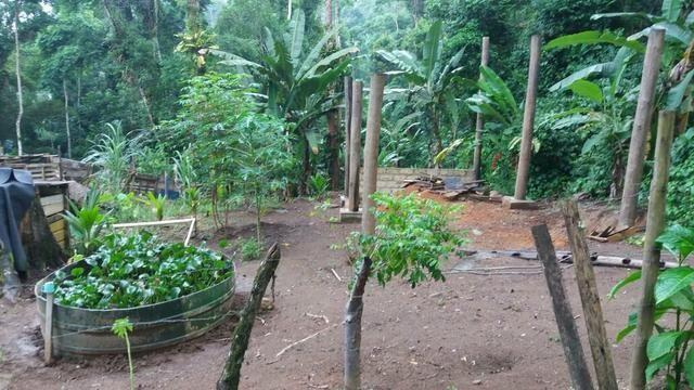 Vende-se este terreno,em Paraty na várzea do corumbe (10por42 420 metros quadrados